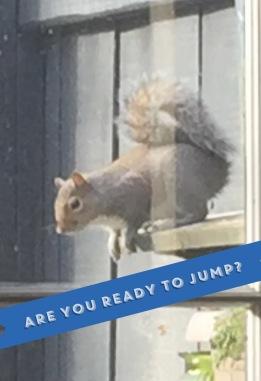 Rascal Jumping